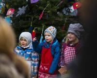 Weihnachtsbaum 2016 (41 von 98)
