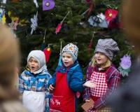 Weihnachtsbaum 2016 (42 von 98)
