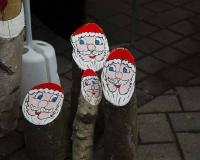 Weihnachtsbaum 2016 (17 von 98)