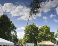 Sommerfest2017 (63 von 169)